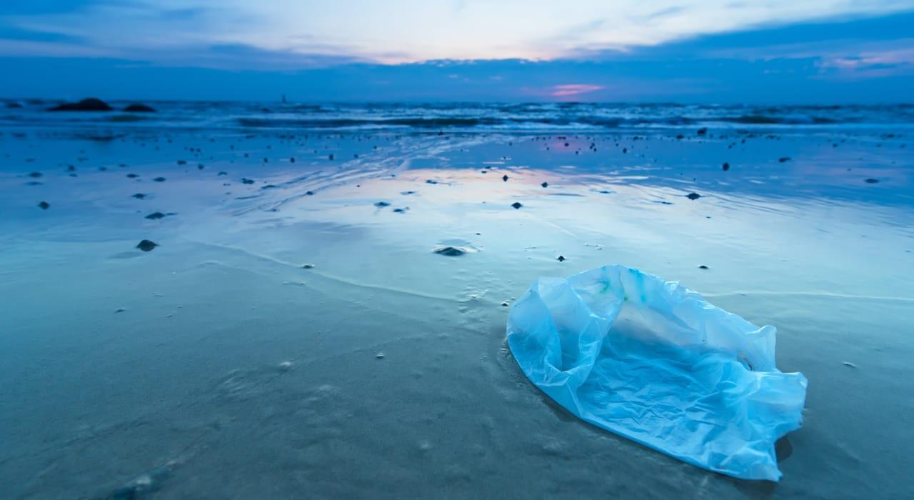 Single use plastics are the biggest threat to marine environments